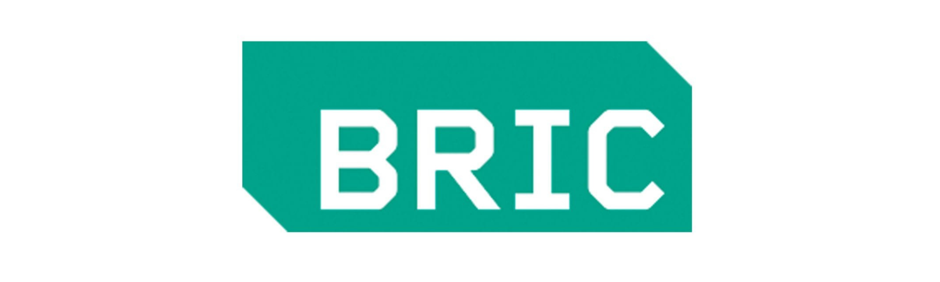 BRIC written in white lettering against a green background.